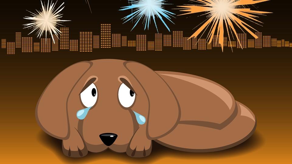 花火恐怖症の犬にはCBDオイルが必須アイテムになる