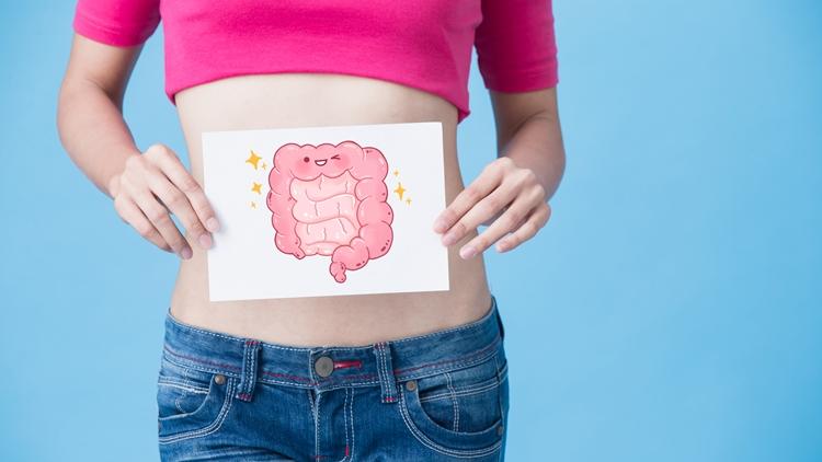プランタゴオバタ末は不溶性食物繊維で腸内環境を整える