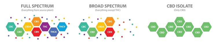 THC 以外のカンナビノイドが含まれた製品