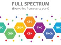 What is Full Spectrum CBD