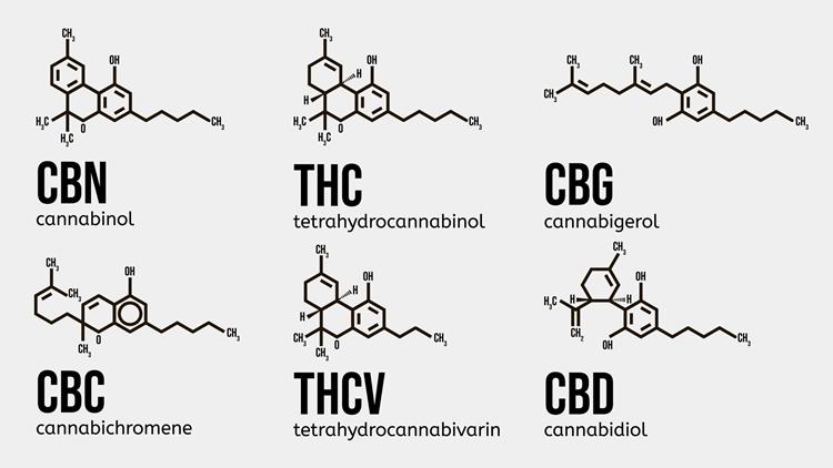 大麻草の成分がすべて含まれた製品がフルスペクトラム