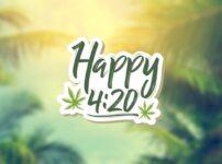 【420キャンペーン】衝撃の 42% オフ!そしてポイント42倍!